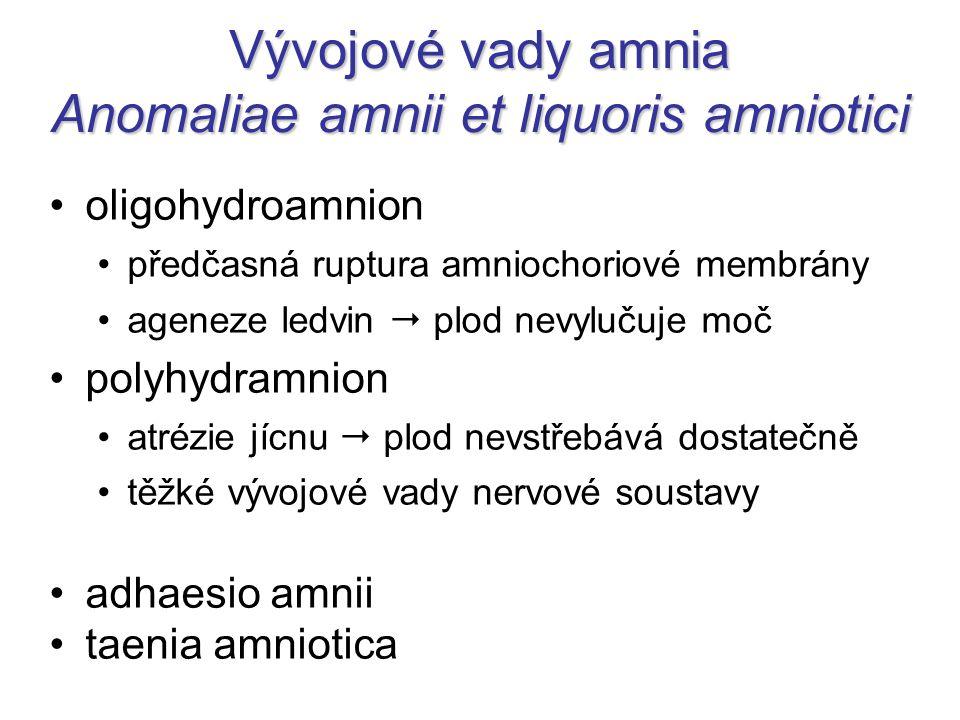 Vývojové vady amnia Anomaliae amnii et liquoris amniotici oligohydroamnion předčasná ruptura amniochoriové membrány ageneze ledvin  plod nevylučuje m