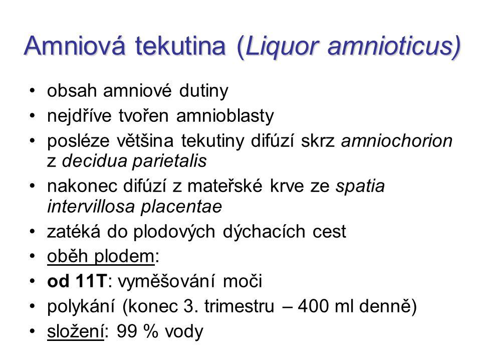 Amniová tekutina (Liquor amnioticus) obsah amniové dutiny nejdříve tvořen amnioblasty posléze většina tekutiny difúzí skrz amniochorion z decidua pari