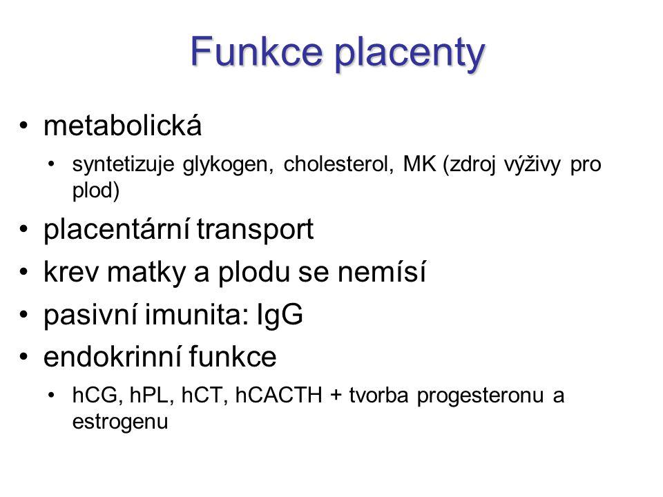 Funkce placenty metabolická syntetizuje glykogen, cholesterol, MK (zdroj výživy pro plod) placentární transport krev matky a plodu se nemísí pasivní i
