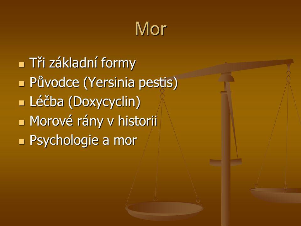 Mor Tři základní formy Tři základní formy Původce (Yersinia pestis) Původce (Yersinia pestis) Léčba (Doxycyclin) Léčba (Doxycyclin) Morové rány v historii Morové rány v historii Psychologie a mor Psychologie a mor