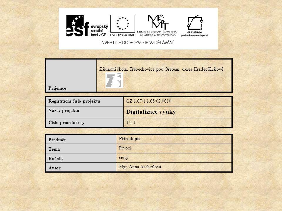 Příjemce Základní škola, Třebechovice pod Orebem, okres Hradec Králové Registrační číslo projektuCZ.1.07/1.1.05/02.0010 Název projektu Digitalizace vý