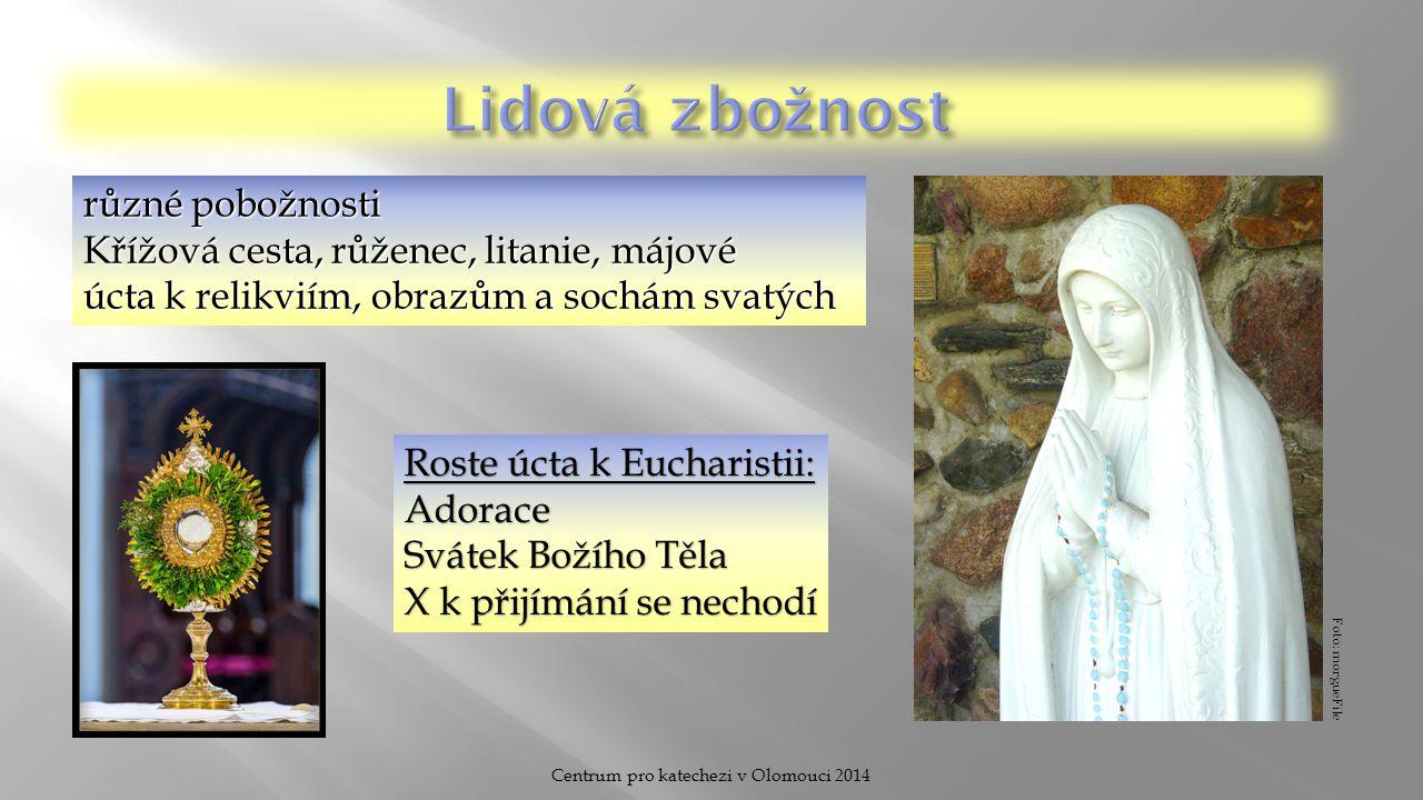 Centrum pro katechezi v Olomouci 2014 různé pobožnosti Křížová cesta, růženec, litanie, májové úcta k relikviím, obrazům a sochám svatých Roste úcta k