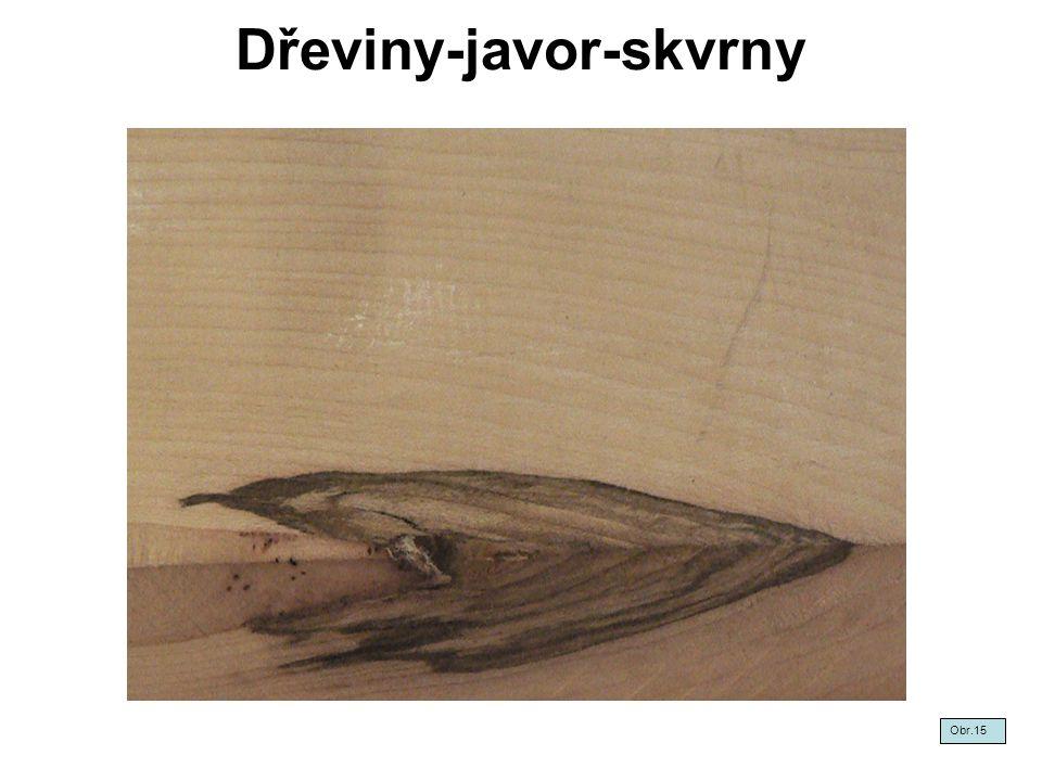 Dřeviny-javor-skvrny Obr.15