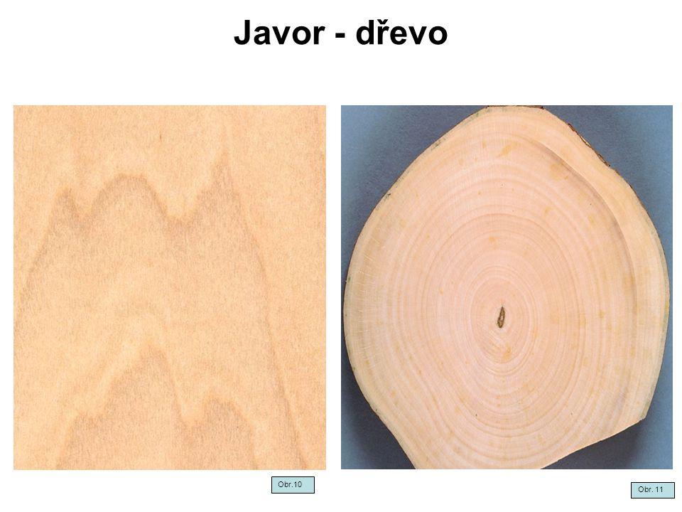 Javor - dřevo Obr.10 Obr. 11