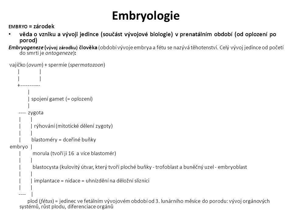 Oplození http://commons.wikimedia.org/wiki/Category:N idation#mediaviewer/File:Human_Fertilization.png http://embryodynamics.com/?page_id=15&a=1 5 http://embryodynamics.com/?page_id=15&a=2 2