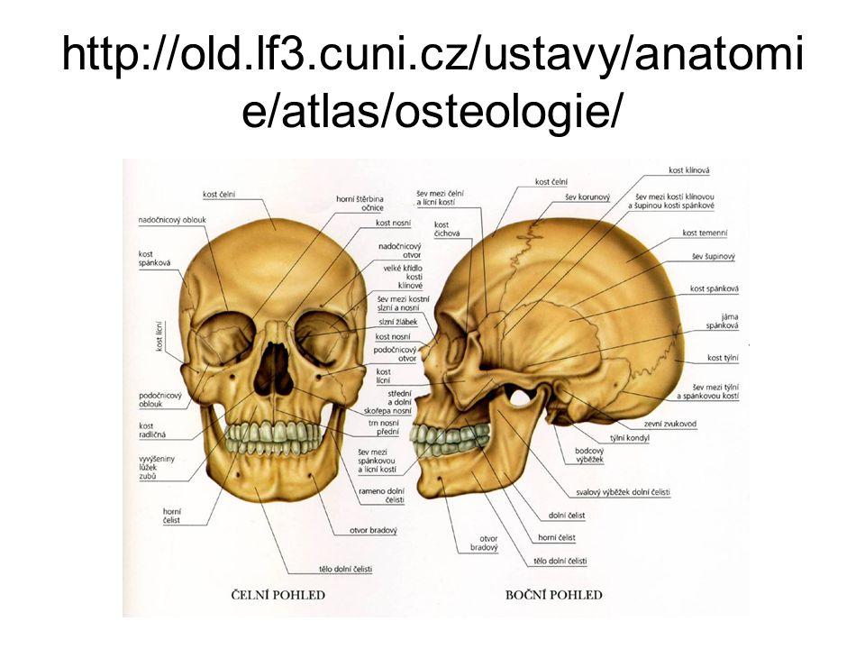 http://old.lf3.cuni.cz/ustavy/anatomi e/atlas/osteologie/