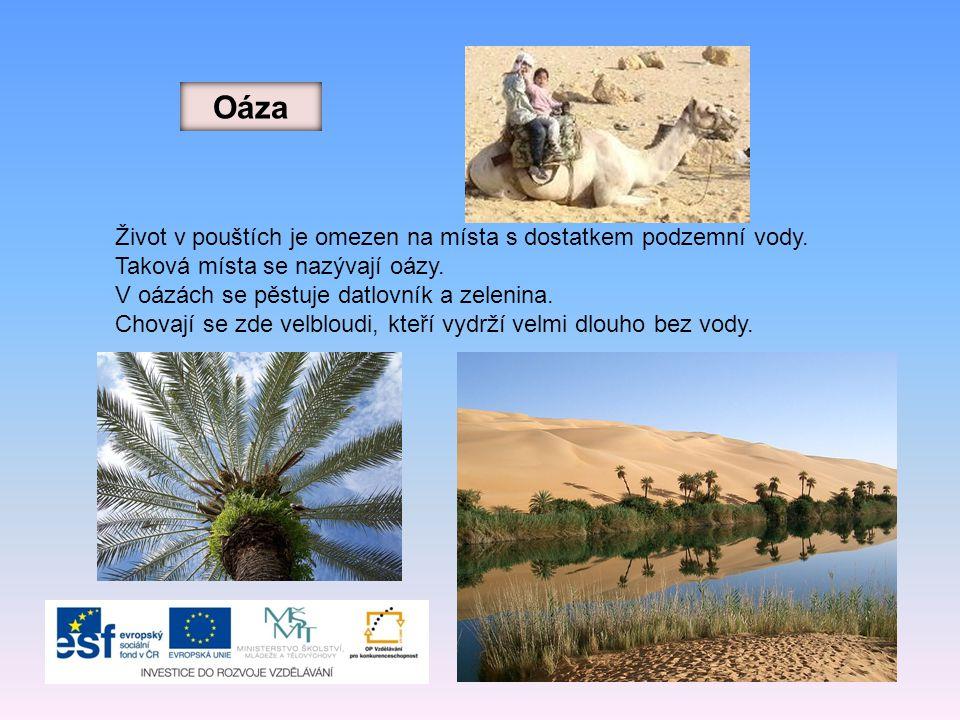 Oáza Život v pouštích je omezen na místa s dostatkem podzemní vody. Taková místa se nazývají oázy. V oázách se pěstuje datlovník a zelenina. Chovají s