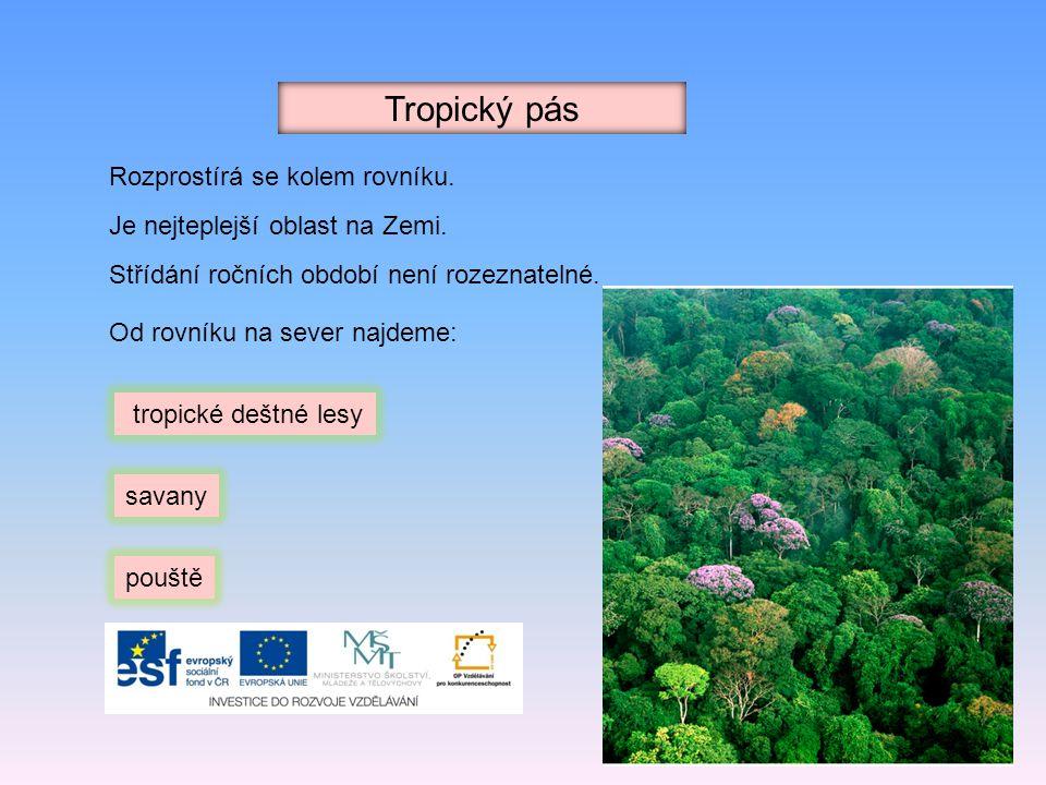 Tropický pás Rozprostírá se kolem rovníku. Je nejteplejší oblast na Zemi. Střídání ročních období není rozeznatelné. tropické deštné lesy savany poušt