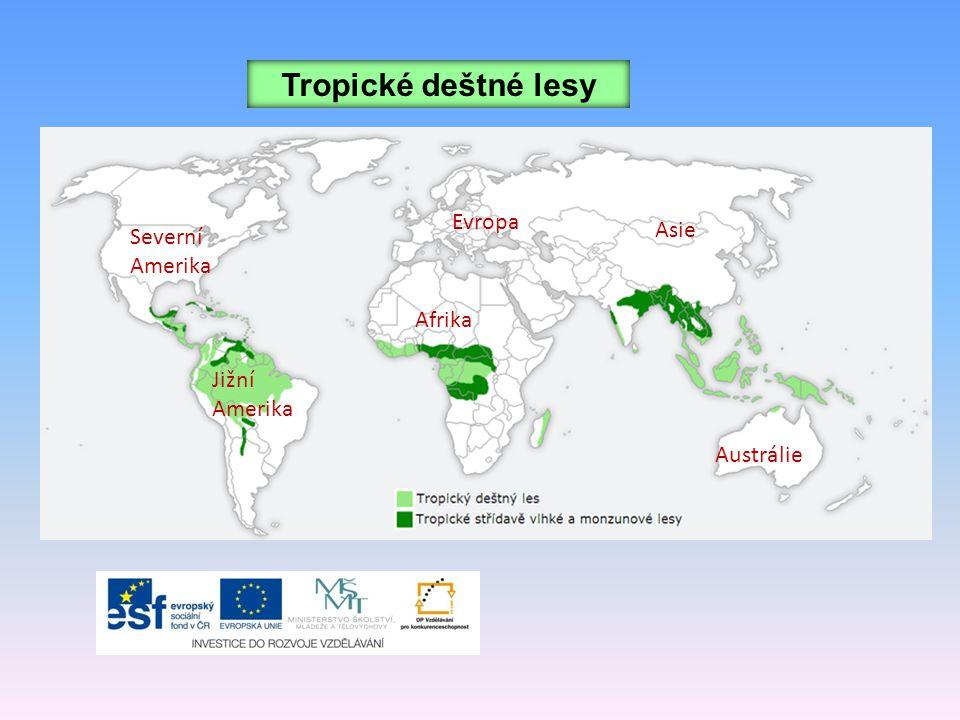 Tropické deštné lesy Severní Amerika Jižní Amerika Afrika Evropa Asie Austrálie