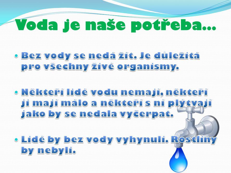 Lidé co vodu nemají Obrázky znečištěné vody Lidé co si vody neváží Lidé co v nouzi lidem pomáhají Zdroje Ponaučení