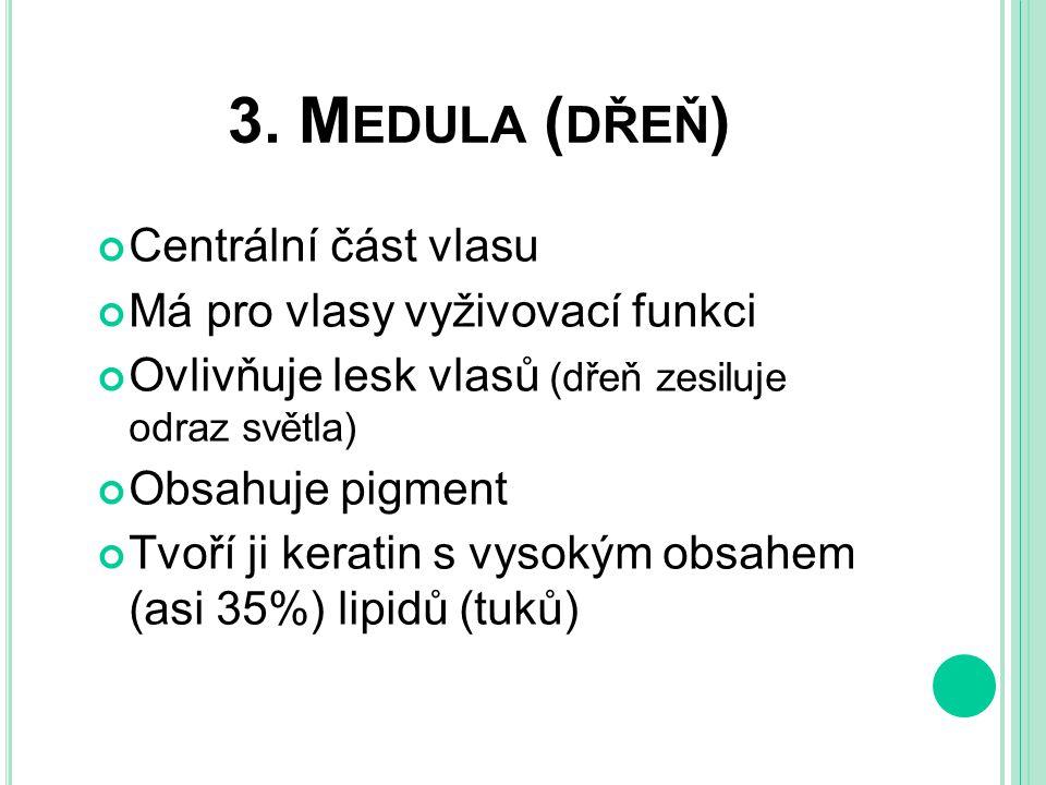 Obr. 1 medula