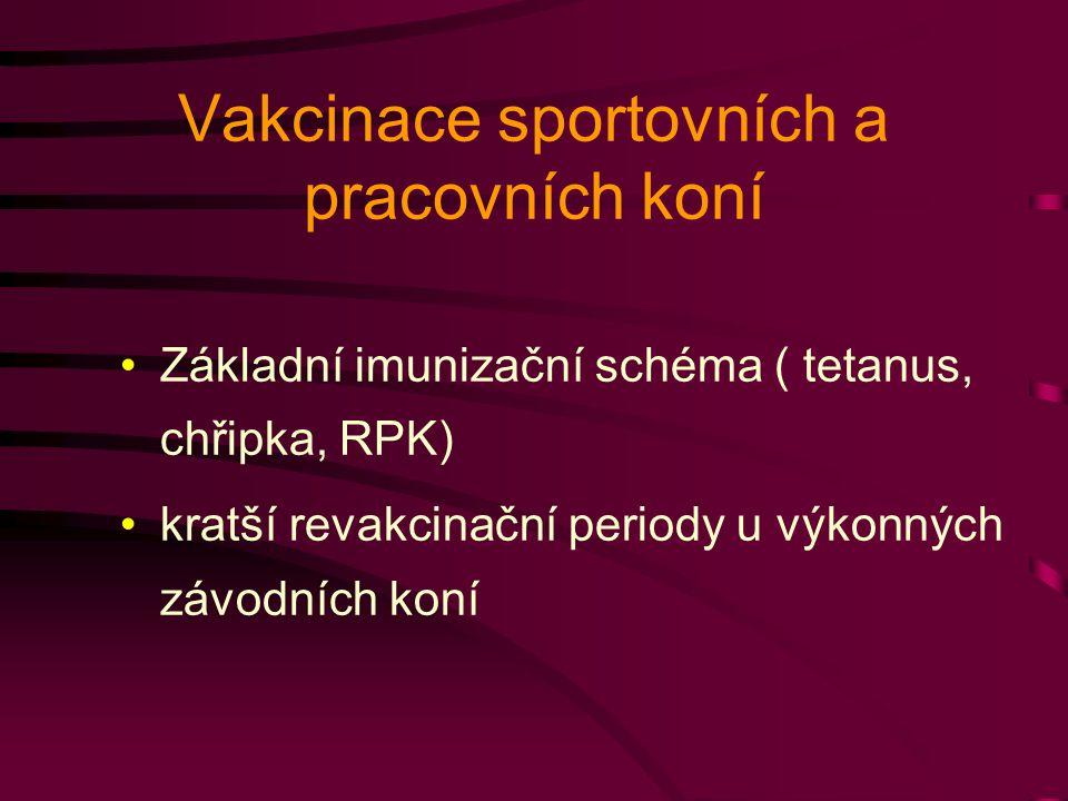 Vakcinace sportovních a pracovních koní Základní imunizační schéma ( tetanus, chřipka, RPK) kratší revakcinační periody u výkonných závodních koní