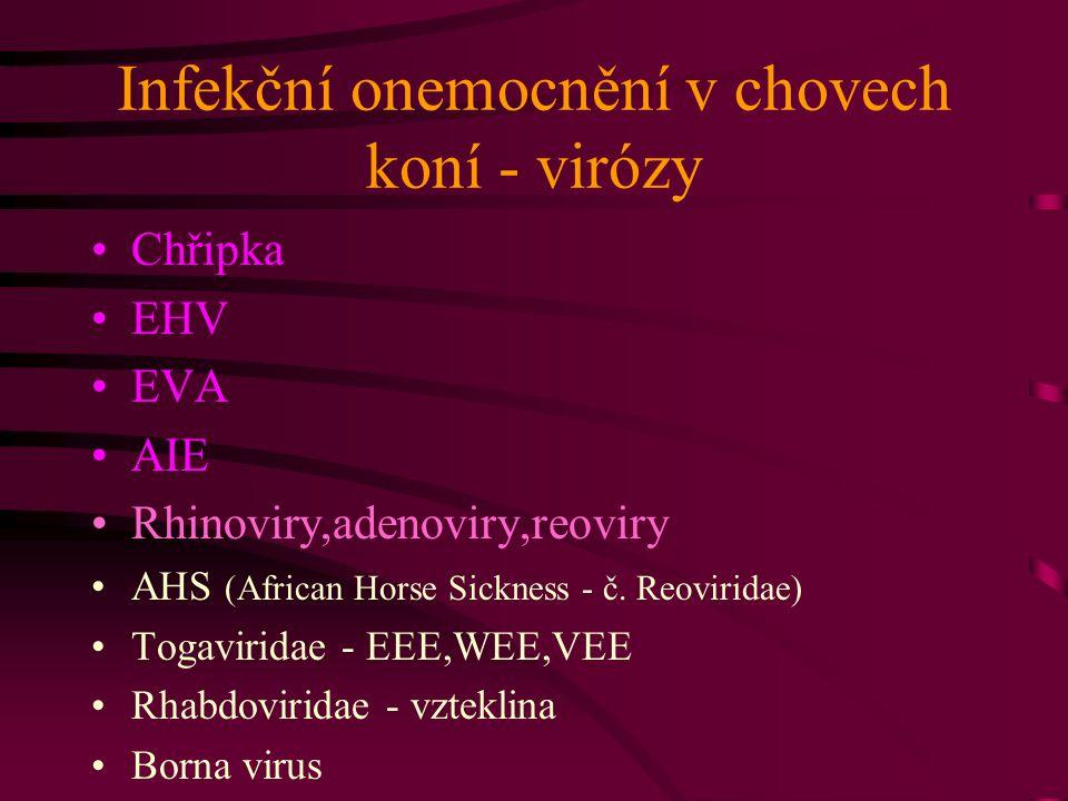 Infekční onemocnění v chovech koní - virózy Chřipka EHV EVA AIE Rhinoviry,adenoviry,reoviry AHS (African Horse Sickness - č. Reoviridae) Togaviridae -