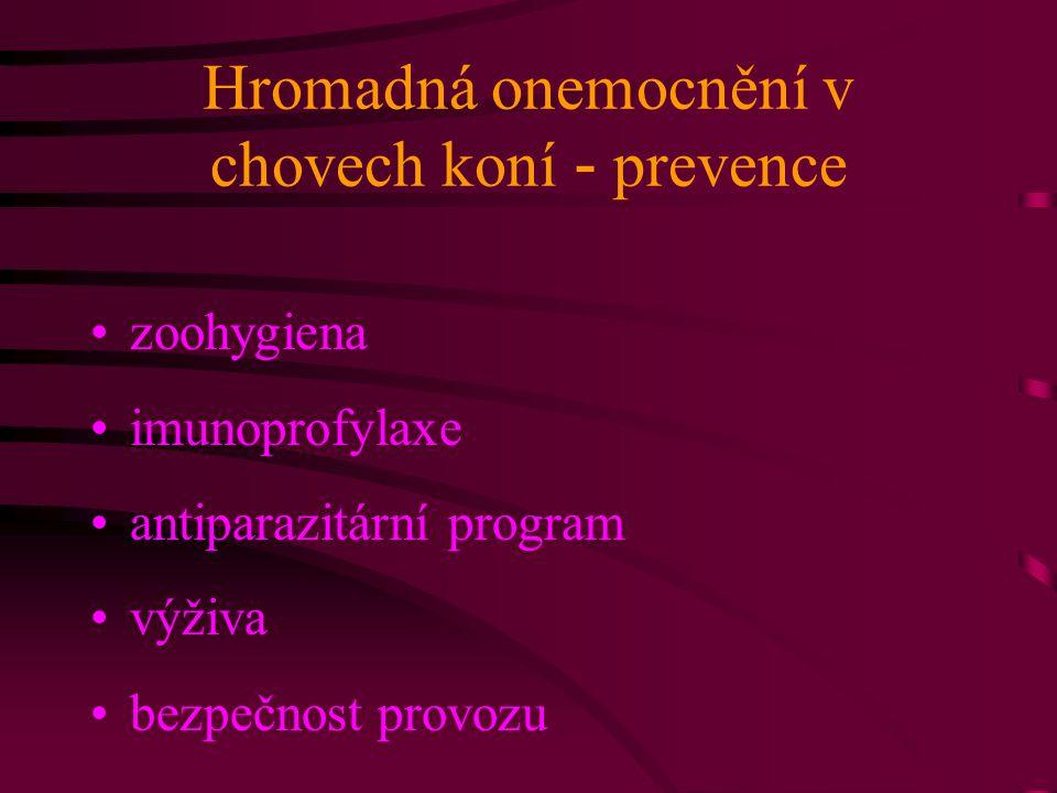 Hromadná onemocnění v chovech koní - prevence zoohygiena imunoprofylaxe antiparazitární program výživa bezpečnost provozu