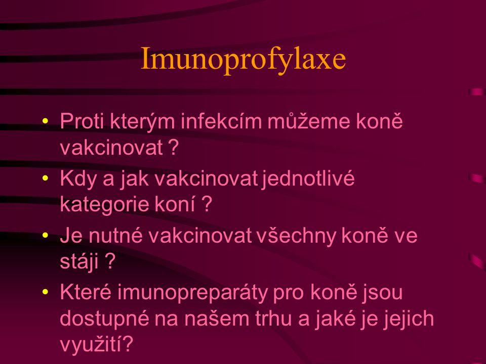 Imunoprofylaxe Proti kterým infekcím můžeme koně vakcinovat ? Kdy a jak vakcinovat jednotlivé kategorie koní ? Je nutné vakcinovat všechny koně ve stá