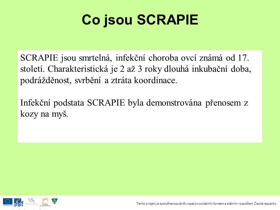 Tento projekt je spolufinancován Evropským sociálním fondem a státním rozpočtem České republiky. Investice do rozvoje vzdělávání Co jsou SCRAPIE SCRAP