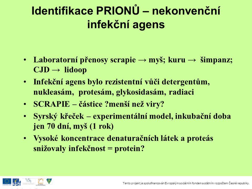 Tento projekt je spolufinancován Evropským sociálním fondem a státním rozpočtem České republiky. Investice do rozvoje vzdělávání Identifikace PRIONŮ –