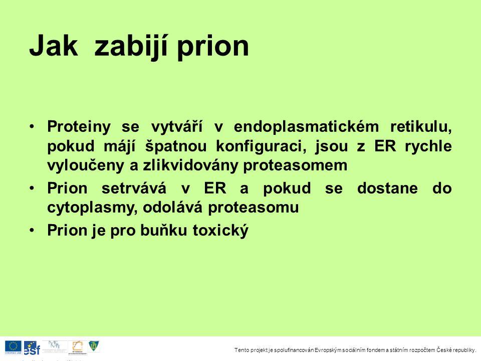 Tento projekt je spolufinancován Evropským sociálním fondem a státním rozpočtem České republiky. Investice do rozvoje vzdělávání Jak zabijí prion Prot