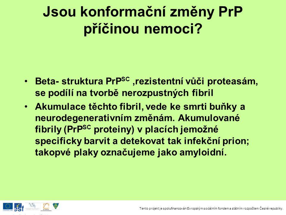 Tento projekt je spolufinancován Evropským sociálním fondem a státním rozpočtem České republiky. Investice do rozvoje vzdělávání Jsou konformační změn