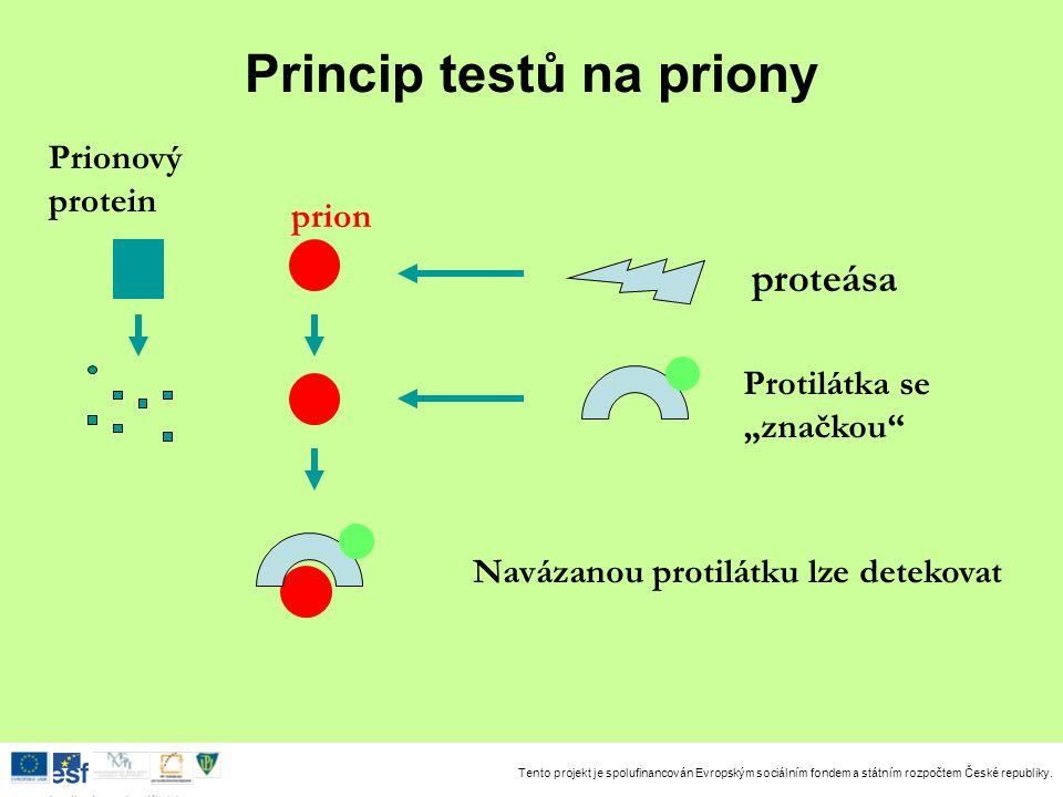 Tento projekt je spolufinancován Evropským sociálním fondem a státním rozpočtem České republiky. Investice do rozvoje vzdělávání Princip testů na prio