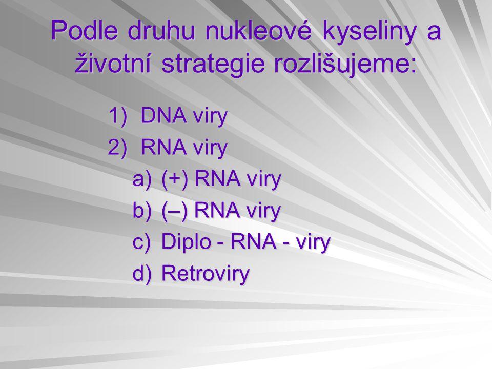 Podle druhu nukleové kyseliny a životní strategie rozlišujeme: 1)DNA viry 2)RNA viry a)(+) RNA viry b)(–) RNA viry c)Diplo - RNA - viry d)Retroviry