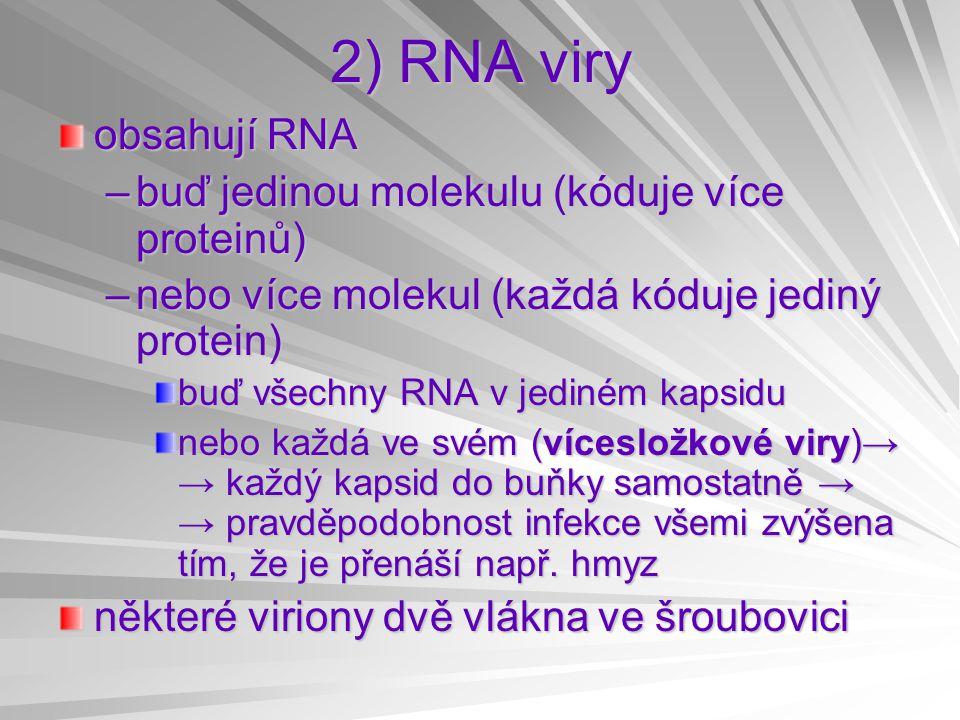 2) RNA viry obsahují RNA –buď jedinou molekulu (kóduje více proteinů) –nebo více molekul (každá kóduje jediný protein) buď všechny RNA v jediném kapsidu nebo každá ve svém (vícesložkové viry)→ → každý kapsid do buňky samostatně → → pravděpodobnost infekce všemi zvýšena tím, že je přenáší např.