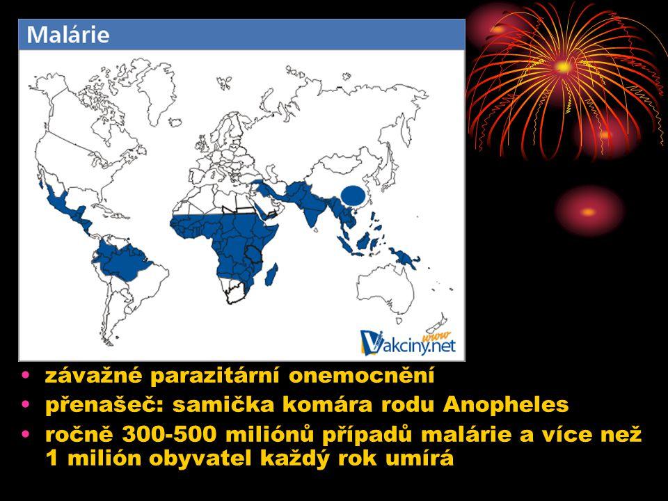 7.12.2004Zdeněk Bergman, G Teplice závažné parazitární onemocnění přenašeč: samička komára rodu Anopheles ročně 300-500 miliónů případů malárie a více