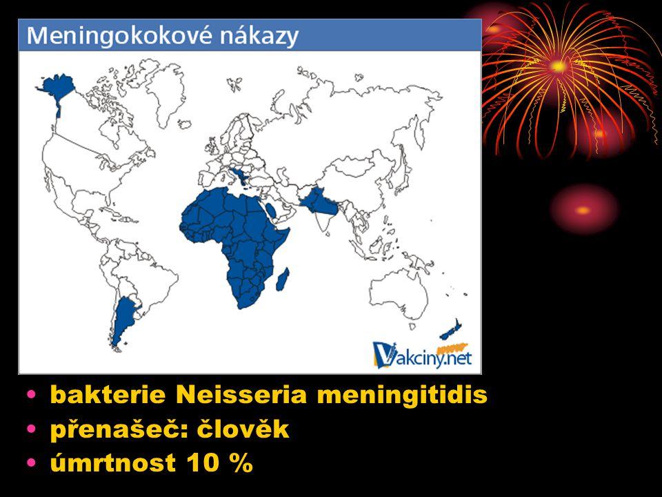 7.12.2004Zdeněk Bergman, G Teplice bakterie Neisseria meningitidis přenašeč: člověk úmrtnost 10 %
