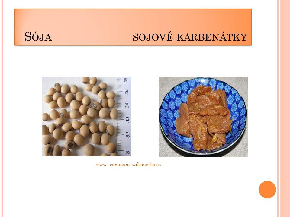 S ÓJA SOJOVÉ KARBENÁTKY www. commons wikimedia.cz