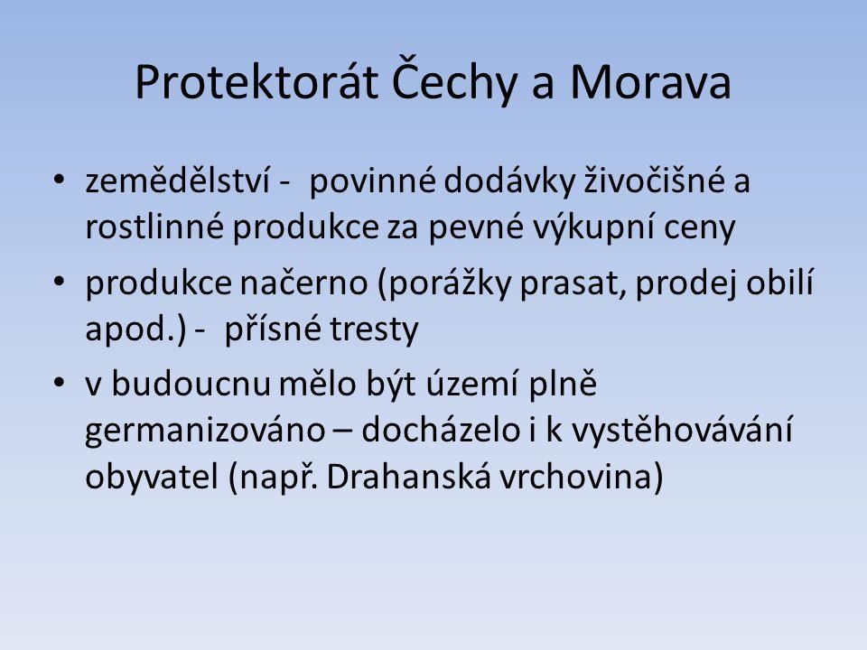 Protektorát Čechy a Morava zemědělství - povinné dodávky živočišné a rostlinné produkce za pevné výkupní ceny produkce načerno (porážky prasat, prodej