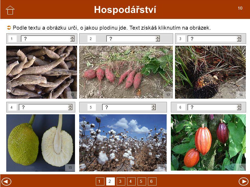 Hospodářství Podle textu a obrázku urči, o jakou plodinu jde.