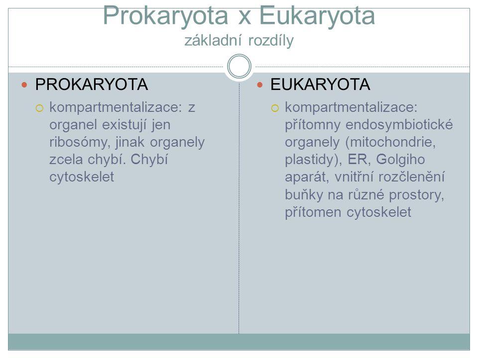 Prokaryota x Eukaryota základní rozdíly PROKARYOTA  kompartmentalizace: z organel existují jen ribosómy, jinak organely zcela chybí. Chybí cytoskelet