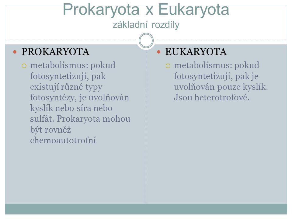 Prokaryota x Eukaryota základní rozdíly PROKARYOTA  metabolismus: pokud fotosyntetizují, pak existují různé typy fotosyntézy, je uvolňován kyslík neb