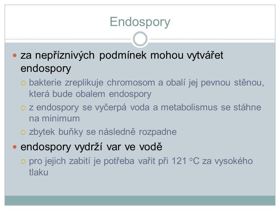 Endospory za nepříznivých podmínek mohou vytvářet endospory  bakterie zreplikuje chromosom a obalí jej pevnou stěnou, která bude obalem endospory  z