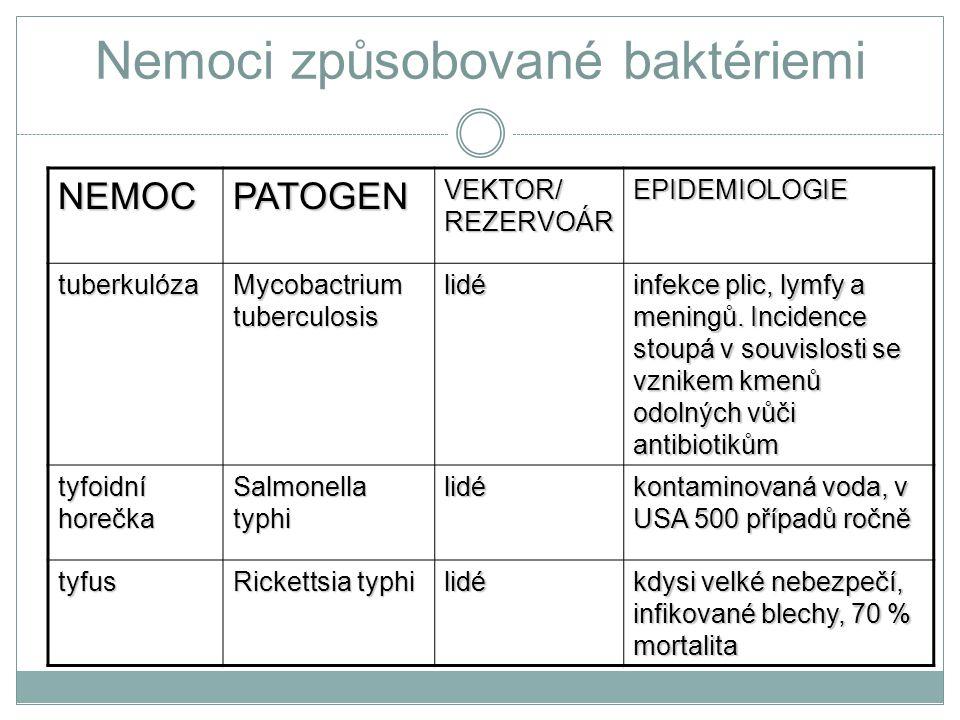 Nemoci způsobované baktériemi NEMOCPATOGEN VEKTOR/ REZERVOÁR EPIDEMIOLOGIE tuberkulóza Mycobactrium tuberculosis lidé infekce plic, lymfy a meningů. I