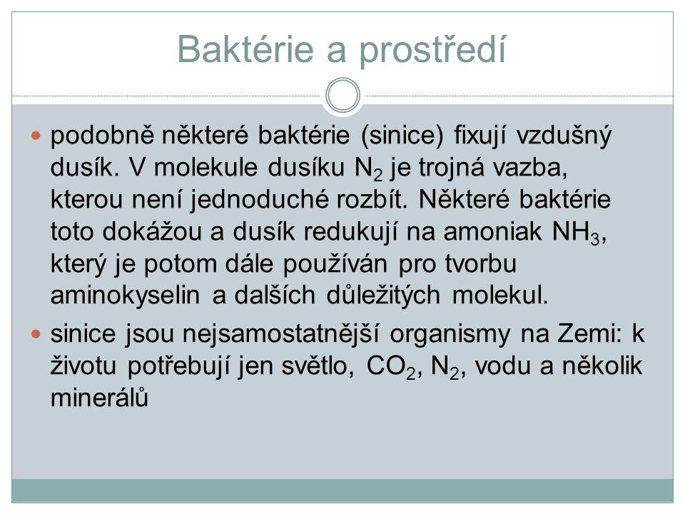Baktérie a prostředí podobně některé baktérie (sinice) fixují vzdušný dusík. V molekule dusíku N 2 je trojná vazba, kterou není jednoduché rozbít. Něk