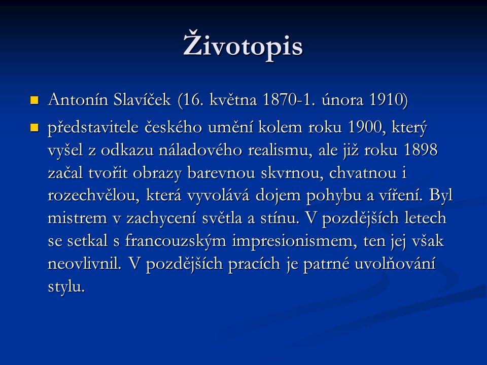 Roku 1887 byl zapsán na AVU v Praze do krajinářské speciálky u profesora Julia Mařáka..