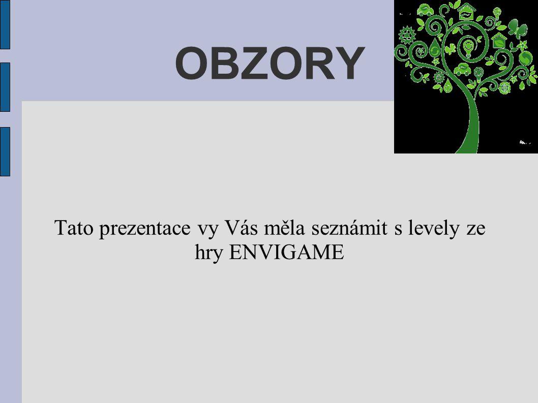 OBZORY Tato prezentace vy Vás měla seznámit s levely ze hry ENVIGAME