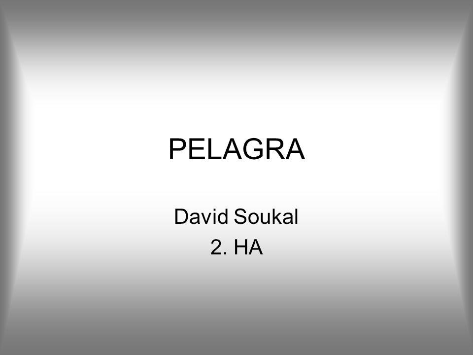 PELAGRA David Soukal 2. HA