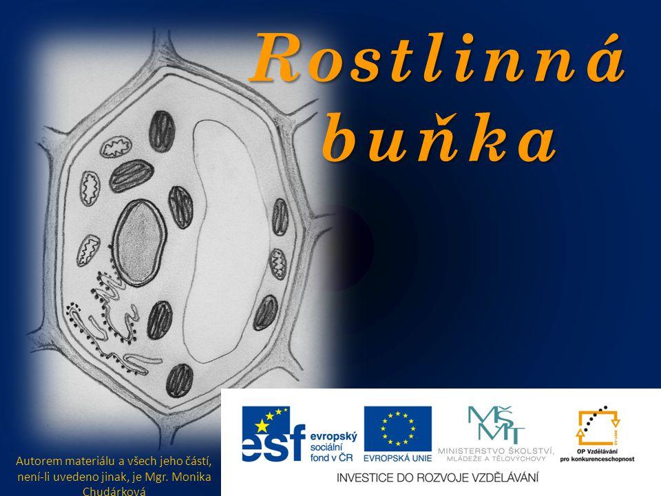 Rostlinná buňka Autorem materiálu a všech jeho částí, není-li uvedeno jinak, je Mgr. Monika Chudárková