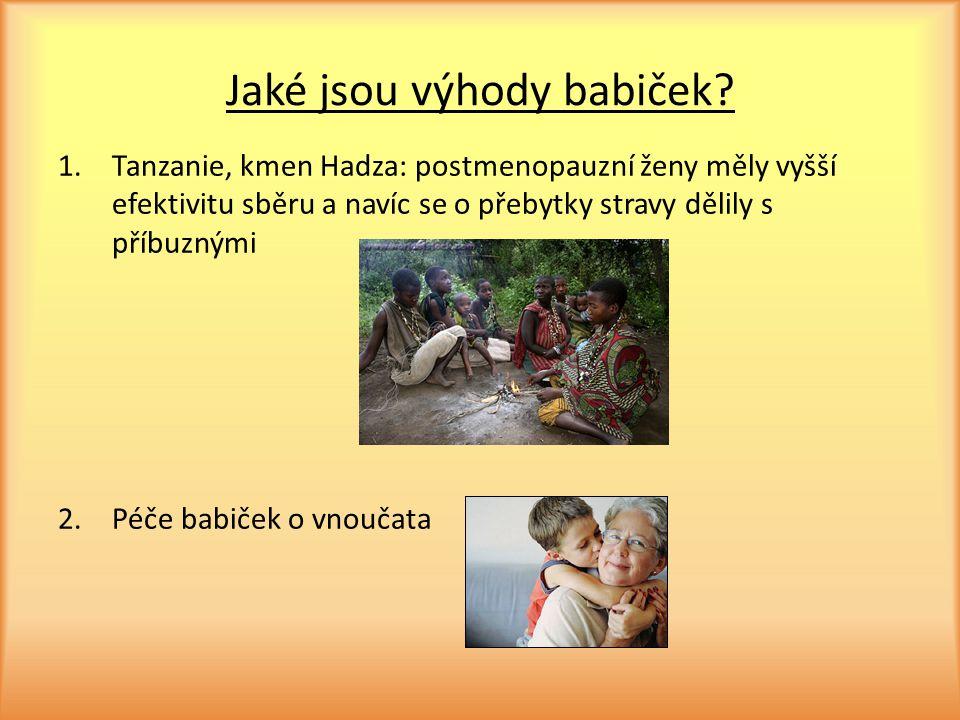 Jaké jsou výhody babiček? 1.Tanzanie, kmen Hadza: postmenopauzní ženy měly vyšší efektivitu sběru a navíc se o přebytky stravy dělily s příbuznými 2.P