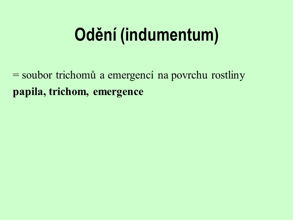 Odění (indumentum) = soubor trichomů a emergencí na povrchu rostliny papila, trichom, emergence