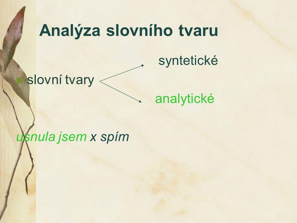 Analýza slovního tvaru syntetické slovní tvary analytické usnula jsem x spím