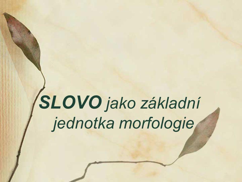 SLOVO jako základní jednotka morfologie