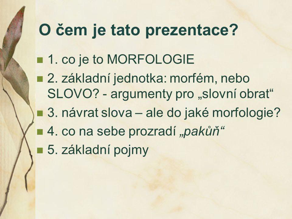 """O čem je tato prezentace? 1. co je to MORFOLOGIE 2. základní jednotka: morfém, nebo SLOVO? - argumenty pro """"slovní obrat"""" 3. návrat slova – ale do jak"""