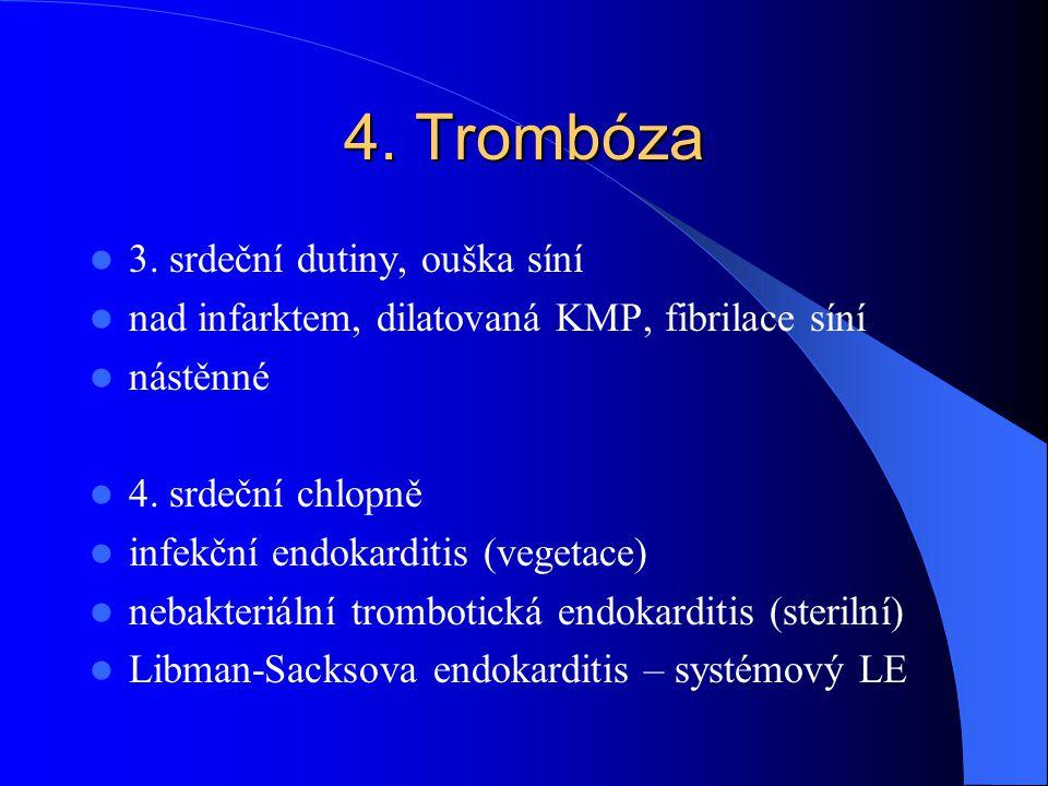 4. Trombóza 3. srdeční dutiny, ouška síní nad infarktem, dilatovaná KMP, fibrilace síní nástěnné 4. srdeční chlopně infekční endokarditis (vegetace) n