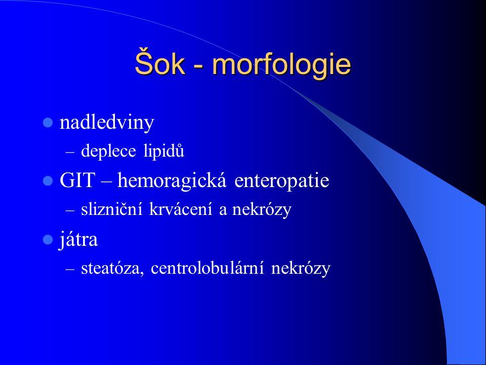 Šok - morfologie nadledviny – deplece lipidů GIT – hemoragická enteropatie – slizniční krvácení a nekrózy játra – steatóza, centrolobulární nekrózy