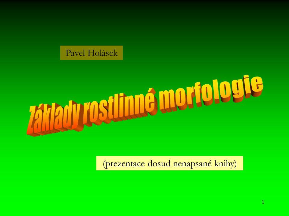 1 (prezentace dosud nenapsané knihy) Pavel Holásek
