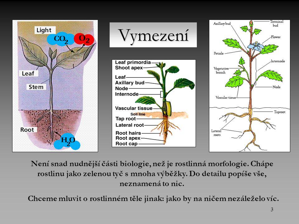 3 Vymezení Není snad nudnější části biologie, než je rostlinná morfologie.
