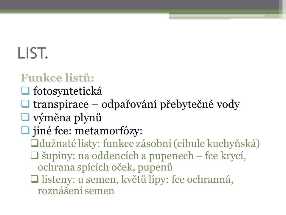 LIST. Funkce listů:  fotosyntetická  transpirace – odpařování přebytečné vody  výměna plynů  jiné fce: metamorfózy:  dužnaté listy: funkce zásobn